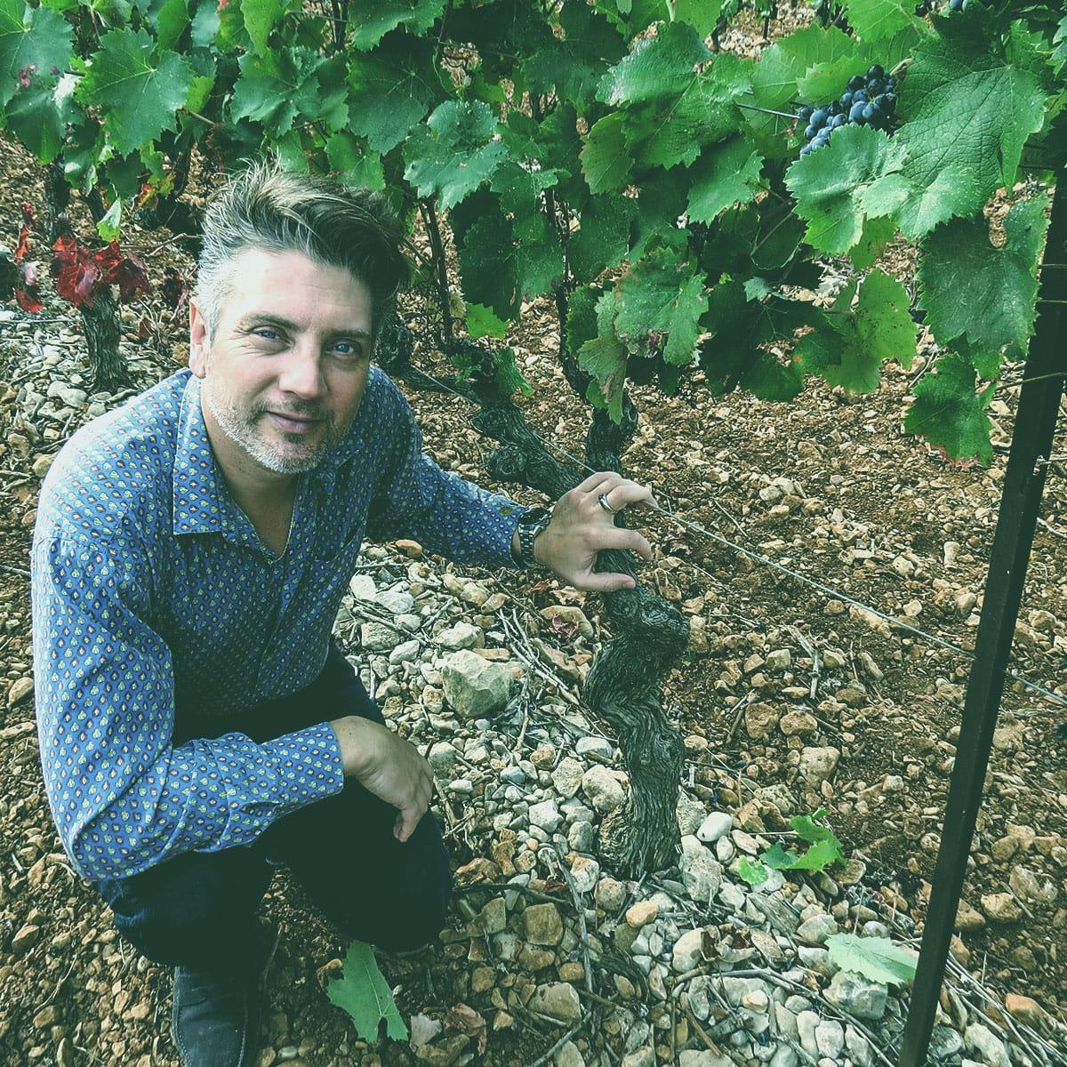 Provence Wine Maker