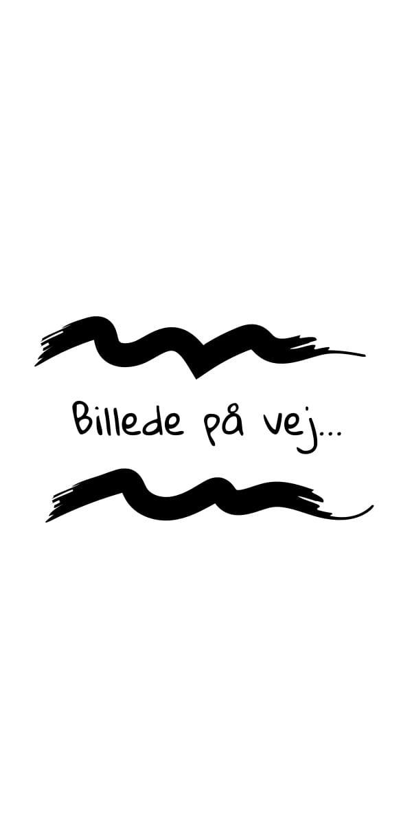 Ebeltoft Gårdbryggeri, Ingefær- og citronbrus 25 cl